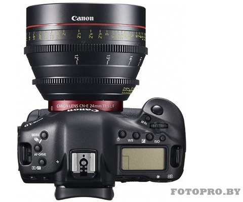 canon 1D__C_top