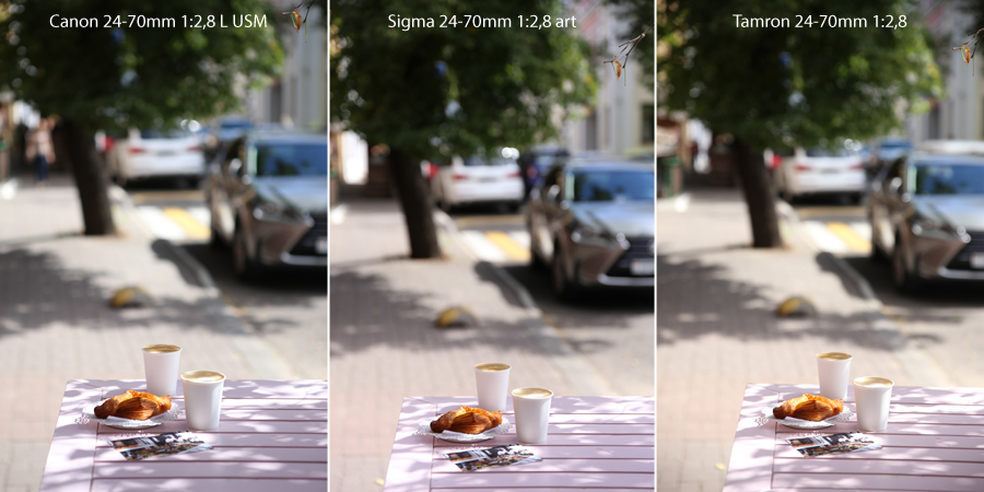 focus accurate_Sigma_24-70mm_art